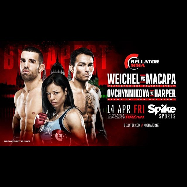 ICYMI: Helen Harper Takes On Lena Ovchynnikova at Bellator 177
