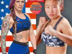 UFC Fight Night 122: Silva vs. Gastelum